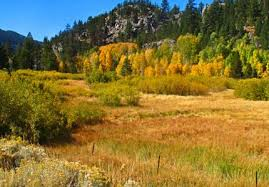 10 places enjoy fall foliage lake tahoe u2014 laketahoe