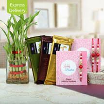 gift to india rakhi gifts rakhi online shopping send rakhi to india ferns
