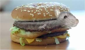 rat cuisine rat barfblog page 3