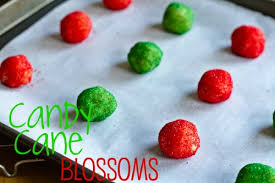 blossoms candy 12 weeks of christmas week 12 kisses candy blossoms