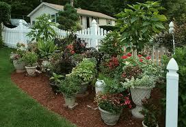 Vegetable Container Garden - container gardens container vegetable gardening designing your