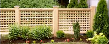 wood lattice wall how to build your own wood lattice fence