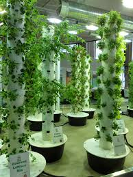 Vertical Aeroponic Garden Grow It Eat It Introductions And The O U0027hare Urban Garden