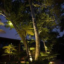 How To String Lights On Outdoor Tree Branches by Landscape Lighting Guide Landscape Lighting Tips At Lumens Com