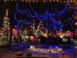 283 best christmas lights images on pinterest christmas time