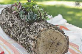 tree stump planters succulent wedding flowers diy ideas for centerpieces bouquets