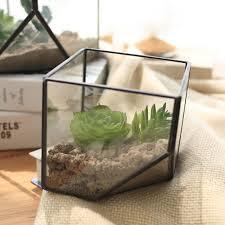 plant glass terrarium cube fairy garden house greenhouse terrarium