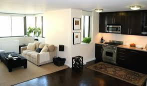 Apartment Setup Ideas Chic Apartment Setup Ideas One Room Apartment Set Up Great And