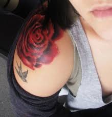 a showing a red rose and bird by her shoulder i don u0027t like