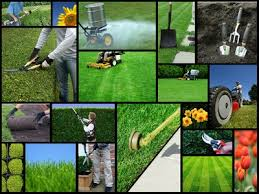what do landscapers do lawn care tips do it yourself tips and advice
