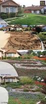 the 25 best drought tolerant landscape ideas on pinterest water