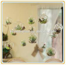 hanging glass terrarium tealight wishing tree decorations buy