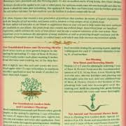 All Natural Flower Food E B Stone Organics All Natural Rose U0026 Flower Food 5 6 3