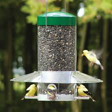 how to keep birds away from patio shop bird feeders at lowes com