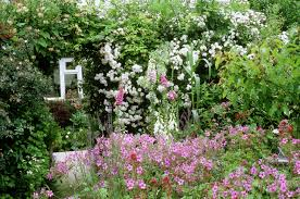 English Cottage Gardens Photos - cottage gardens chaos with a plan