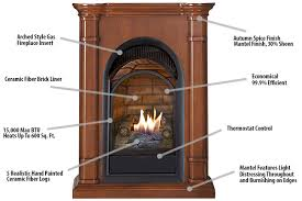 Btu Gas Fireplace - duluth forge dual fuel ventless fireplace with mantel 15 000 btu