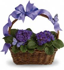 flower shops in springfield mo springfield florists flowers in springfield mo jerome h