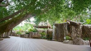 Botanical Gardens Sarasota Fl Visit Selby Botanical Gardens In Central Sarasota Expedia