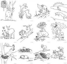 forest animals coloring page murderthestout