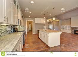 outlook at the luxury modern kitchen in a brand new house stock