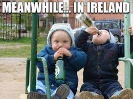 St Patricks Day Funny Memes - hilarious shenanigans by the flanagans funny irish photos date be