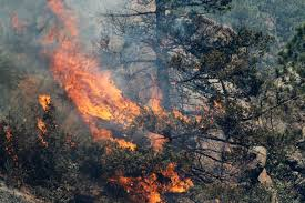 Wildfires In Colorado by Waldo Canyon Fire Claims First Victim 15 Percent Contained Obama