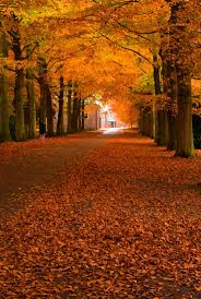 what day is thanksgiving fall on the 1668 best images about autumn fall on pinterest see best