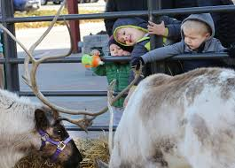 thanksgiving point golf deals thanksgiving point welcomes 2 reindeer visitors deseret news