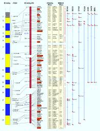 Genome Mapping Exceptional Conservation Of Horse U2013human Gene Order On X Chromosome