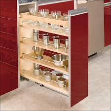 Wall Mount Spice Rack With Jars Dining Room Fabulous Sliding Storage Racks Spice Rack Designs