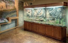 reptile enclosures u2013 das aquariums