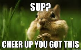 Funny Cheer Up Meme - sup cheer up you got this cheer up chipmunk quickmeme