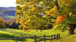 beautiful landscape background hd pixelstalk net