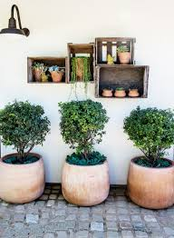 inside a rustic home with an garden small potted