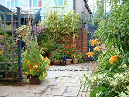 North Facing Backyard Edwardian Courtyard Garden In Devon