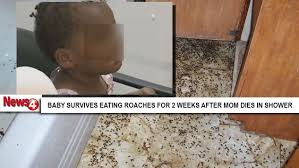 Baby Roaches In Bathroom Baby Survives 2 Weeks Eating Roaches Off The Floor After Mom Dies