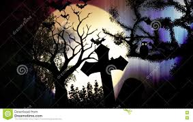 background halloween video halloween witch animation stock footage u0026 videos 44 stock videos