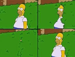 Simpsons Meme Generator - homer simpson bush reverse blank template imgflip