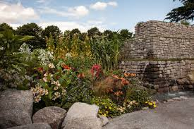 Water Rock Garden Some Inspiring Ideas You Can Use When Designing A Rock Garden