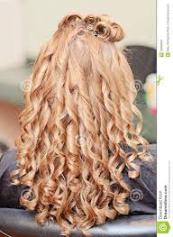 hairstyles back view only curly hair styling stock photo image of female hairdresser