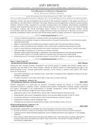 Resume Samples Vice President Marketing by Product Marketing Manager Resume Samples Xpertresumes Com