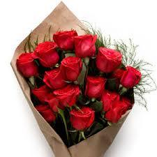 valentines roses a vida é tudo sobre o mostre seu aos seus queridos