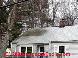 roof debris as a cause of black stains roof surfaces