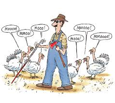 thanksgiving facts the rambler