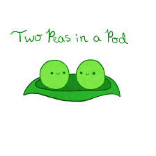 2 peas in a pod two peas in a pod by pettileaf on deviantart