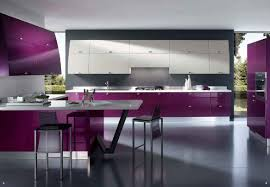 kitchen good looking purple 2017 kitchen idea with wooden