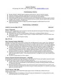 Voice Engineer Resume Cisco Support Engineer Sample Resume 2 It Support Engineer Resume