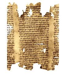thanksgiving and the dead sea scrolls a forensic files mystery