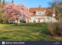 Scandinavian Style House Typical Swedish Style House In Fjallbacka Sweden Stock Photo