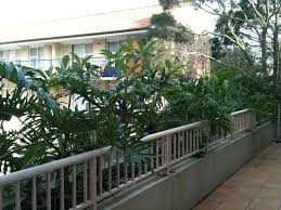 Balcony Planter Box by 19 Best Before And Afters Garden Renovation Images On Pinterest